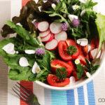 Sommerlicher Wildkräuter Salat