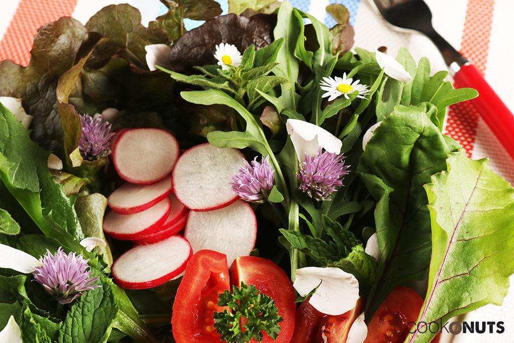 Wildkräuter Salat